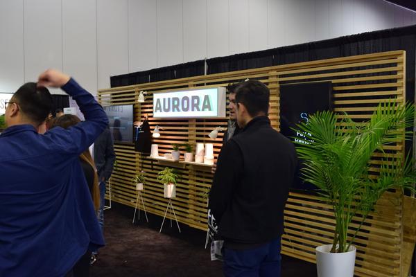 aurora cannabis investor